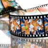 動画まとめサイトの作り方を学べるオススメ教材